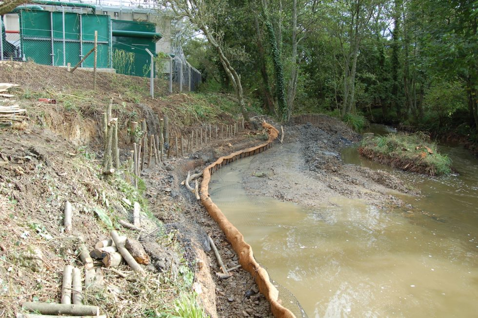 Bio-engineered revetment